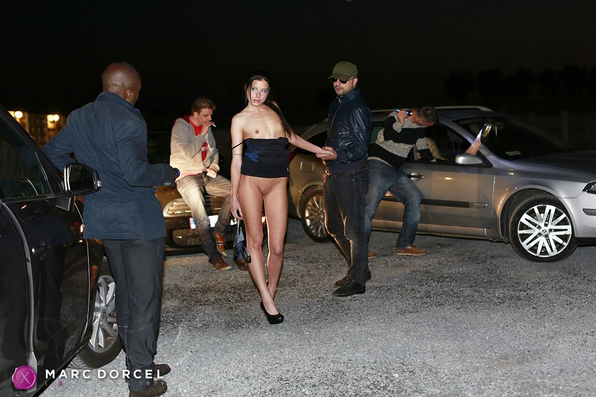 Black male escorts toronto